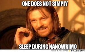 NaNo Quote